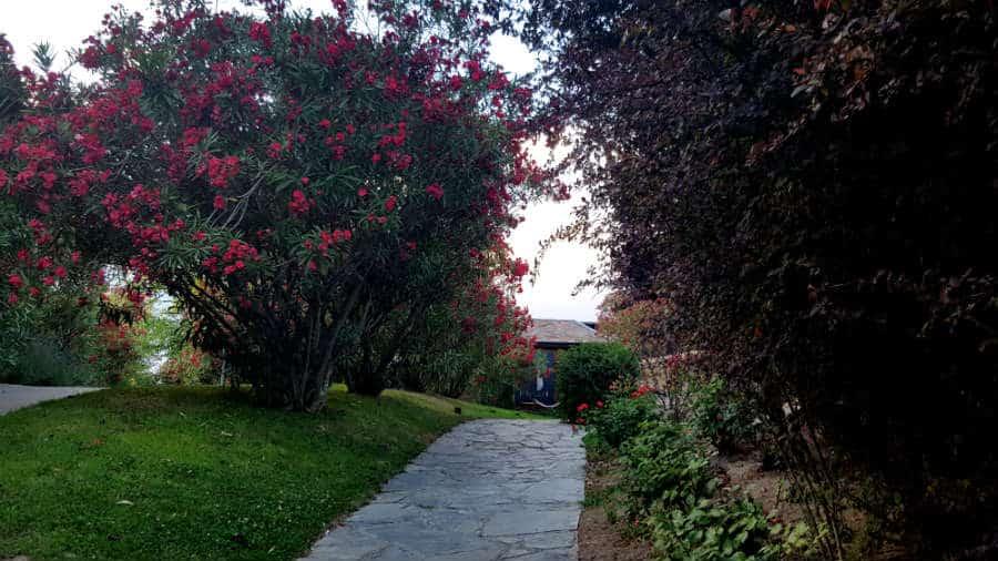 Cabaña Marconi - Camino