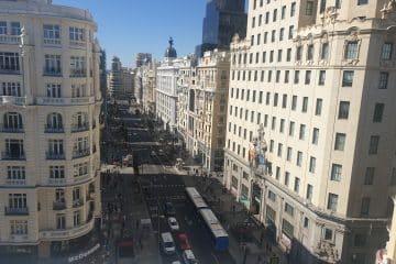 Picalagartos-Portada